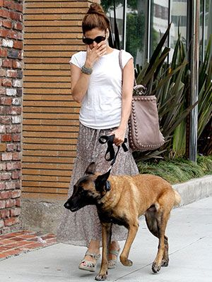 Celebs And Their Look Alike Pooch Pals Belgian Malinois