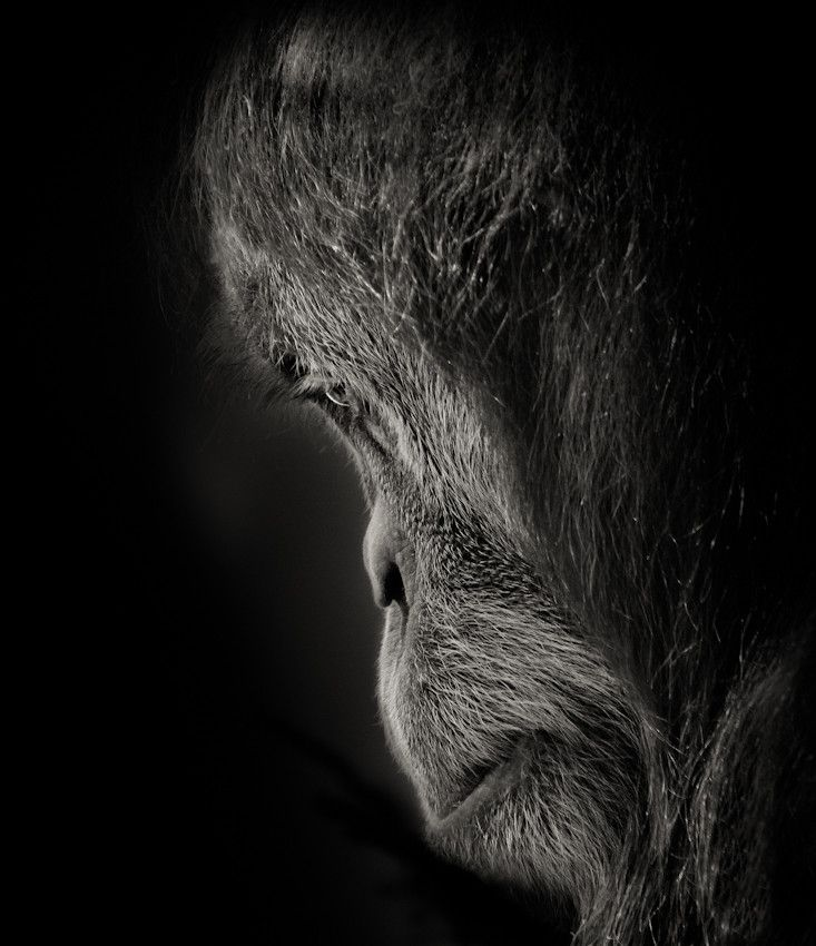 Pensive by Natalie Manuel on 500px