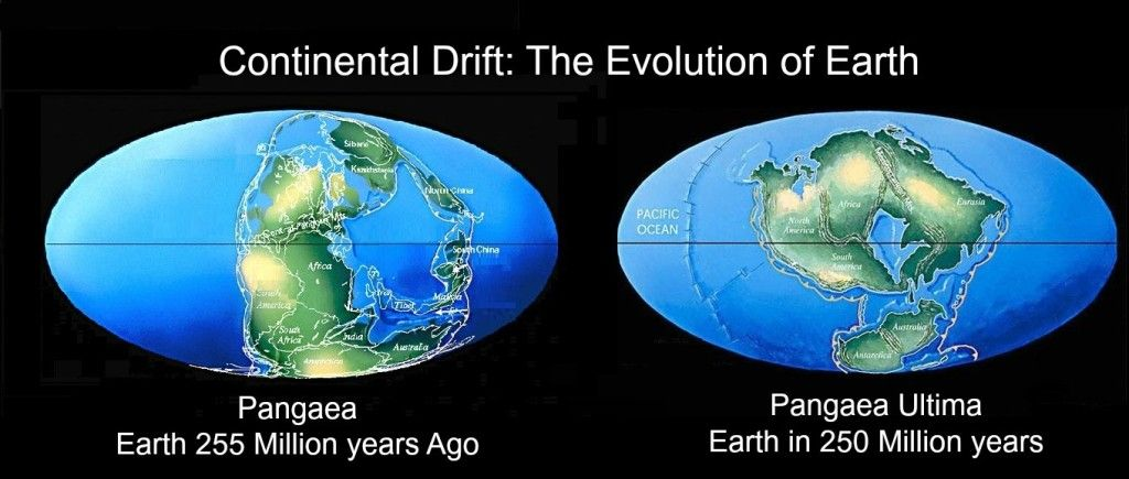 continental drift theory and plate tectonic Plate tectonics - development of tectonic theory: explicitly presented the concept of continental drift though plate tectonics is by no means synonymous with continental drift gestation and birth of plate-tectonic theory.