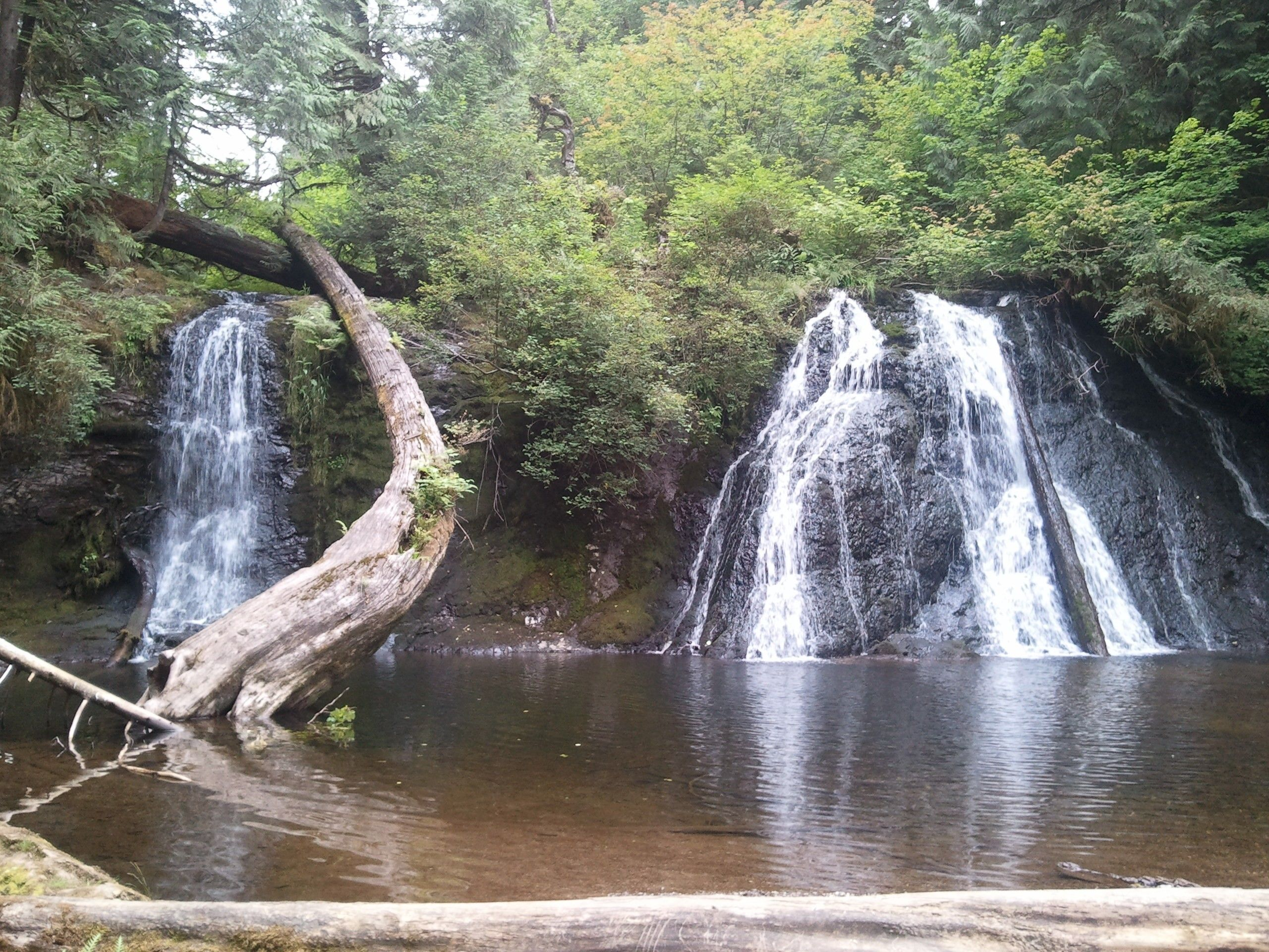 Cherry Creek Falls Duvall WA