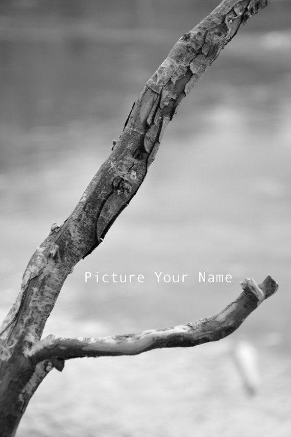 L Photograph Alphabet Photography Photos
