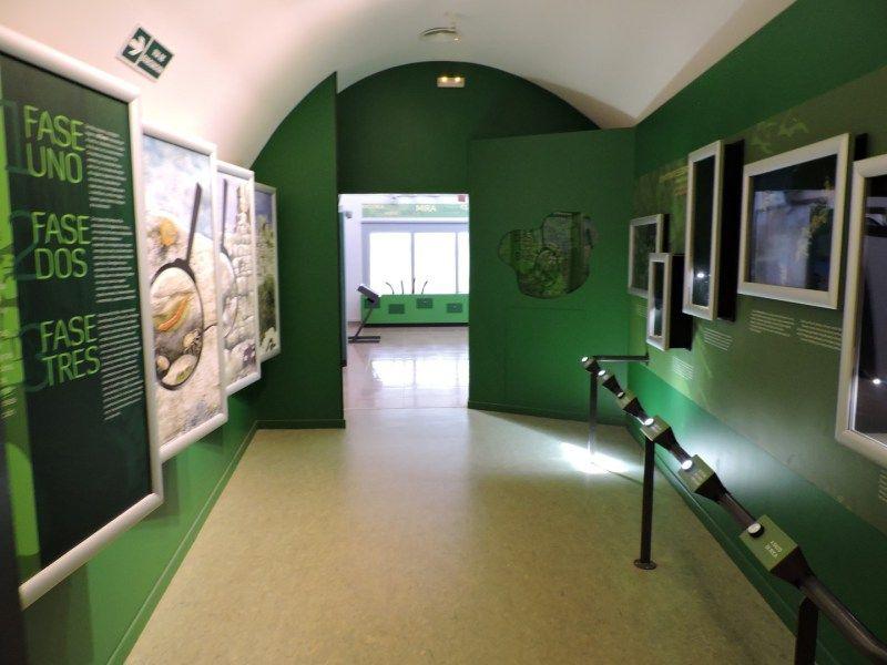 El Torcal de Antequera - En cada sala hay explicaciones sobre la fauna y flora del Torcal.
