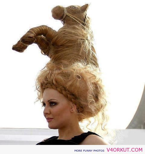 Funny Hair Style Photos Funny Pictures This Is Kinda Cool But I Wouldn T Wear It Out In Public Or Anywhere For That Matter Hair Humor Hair Styles Crazy Hair