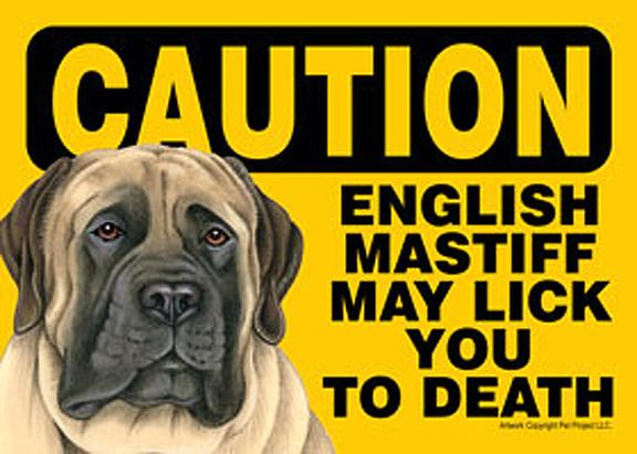 Out Sign Suction Cup 7x5 Breed Mastiff Don/'t Let the