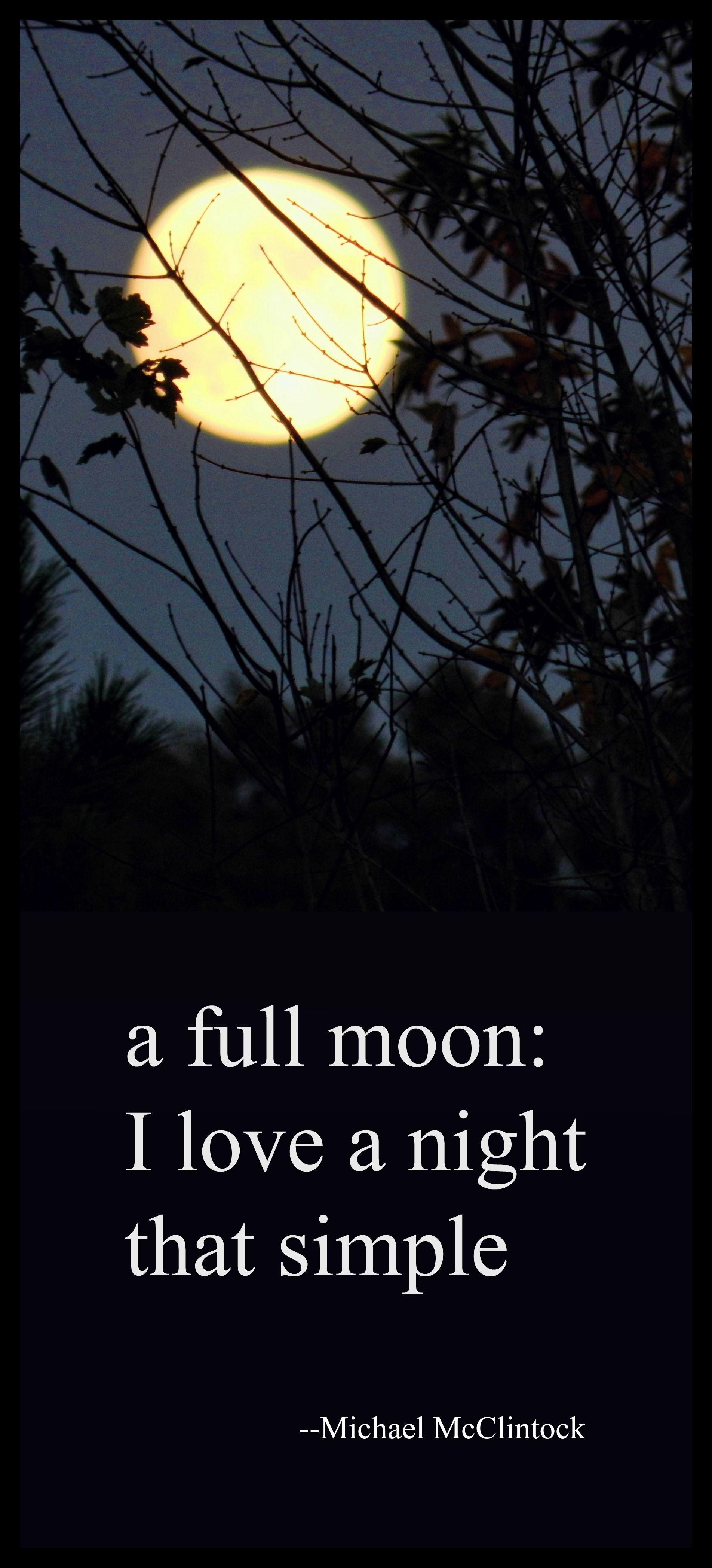 a full moon: I love a night that simple ༺♡༻ Haiku Poem by Michael McClintock