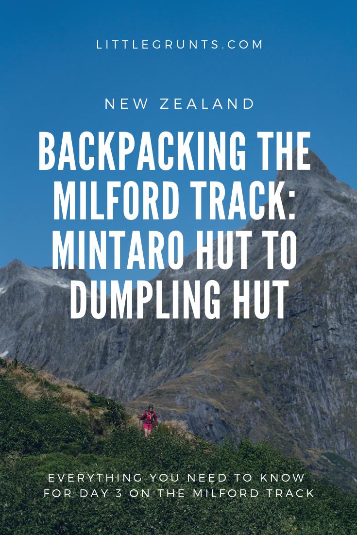 Milford Track, Day 3: Mintaro Hut To Dumpling Hut