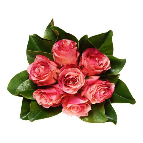 #HotPink #Roses and #MagnoliaLeaves #ArtificialFlowers #Australia