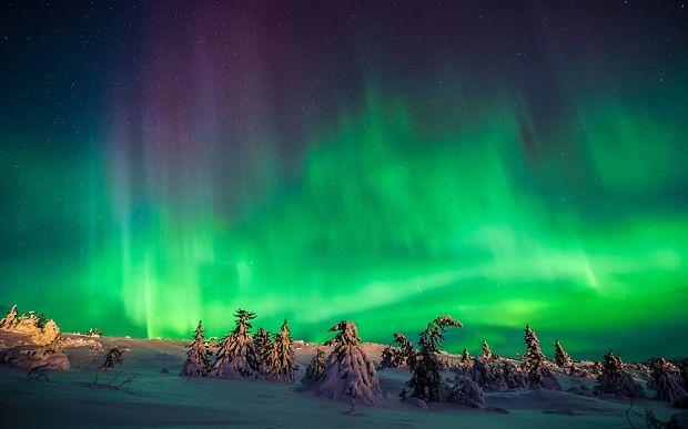 World Escort Directory Escorts In Tromso - AmusanteLin, Ålder:[MEMRES-2]