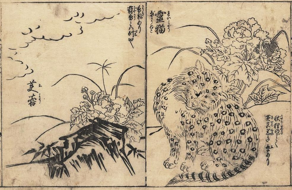 Snow Leopard Japanese Reproduction Woodblock Art Print Picture A3