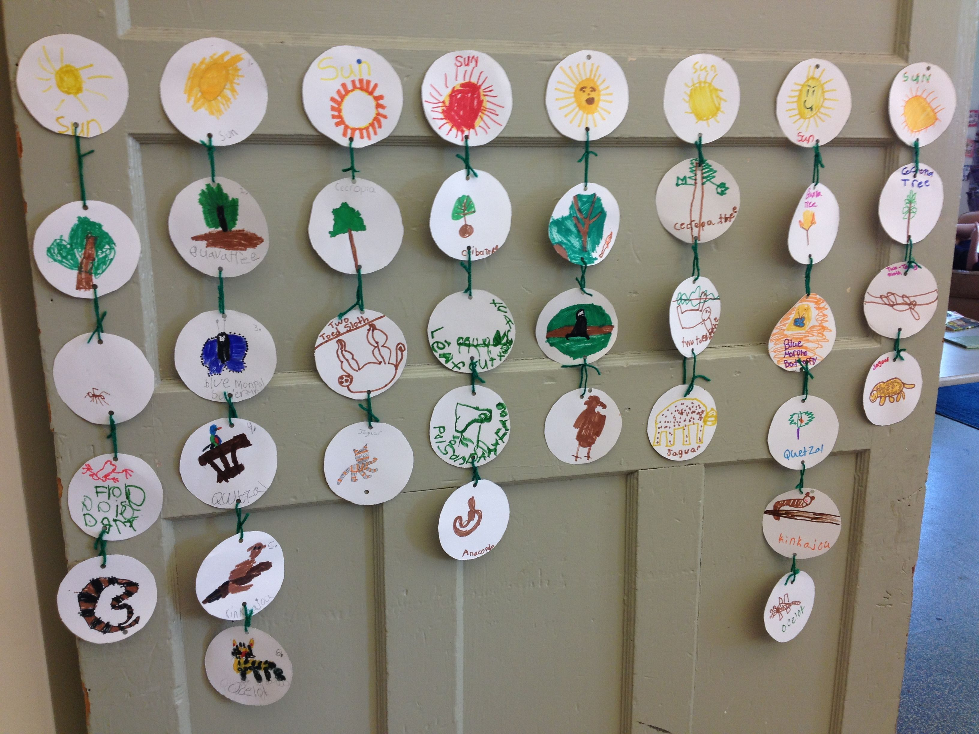 4 Different Food Chains In The Rainforest For Our Rainforest Unit Foodchains Food Chain Activities Rainforest Activities Rainforest Theme [ 2448 x 3264 Pixel ]