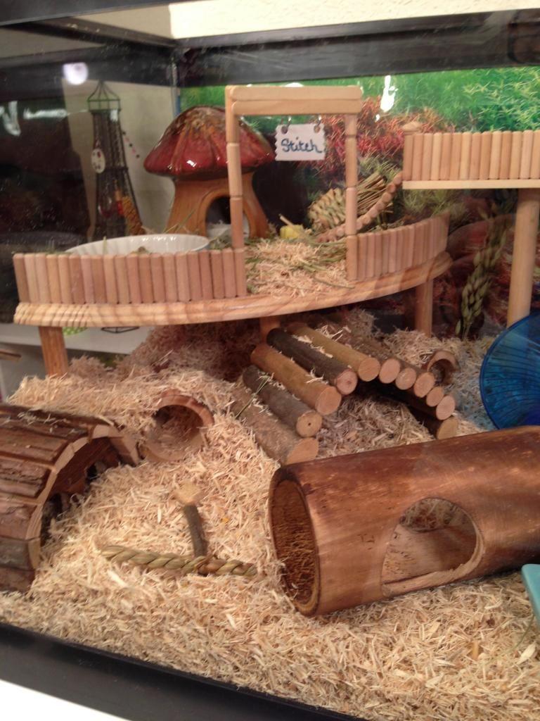 20 Diy Cool Hamster House Cool Hamster Cages Hamster Toys Hamster Habitat