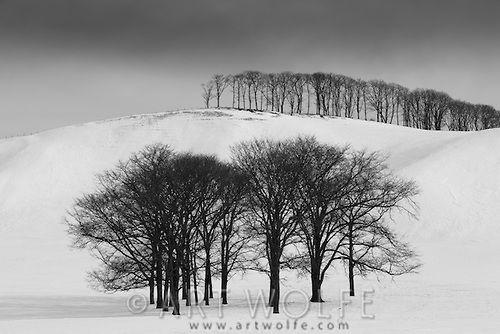 Winter Landscape Hokkaido Japan Winter Landscape Landscape Nature Photography