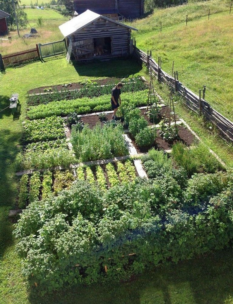 15 Lovely Homestead Farm Garden Layout And Design Ideas Gardens