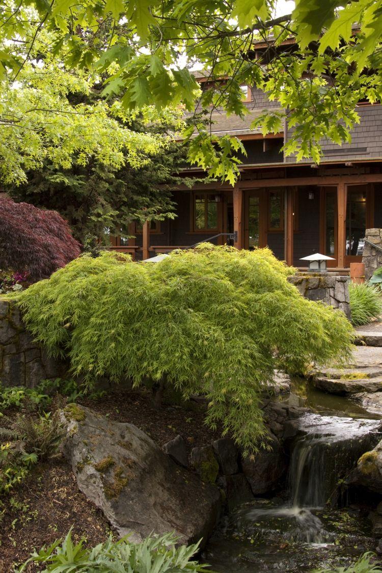 Garten Gestalten Asiatisch Niedrig Strauch Bachlauf Stein