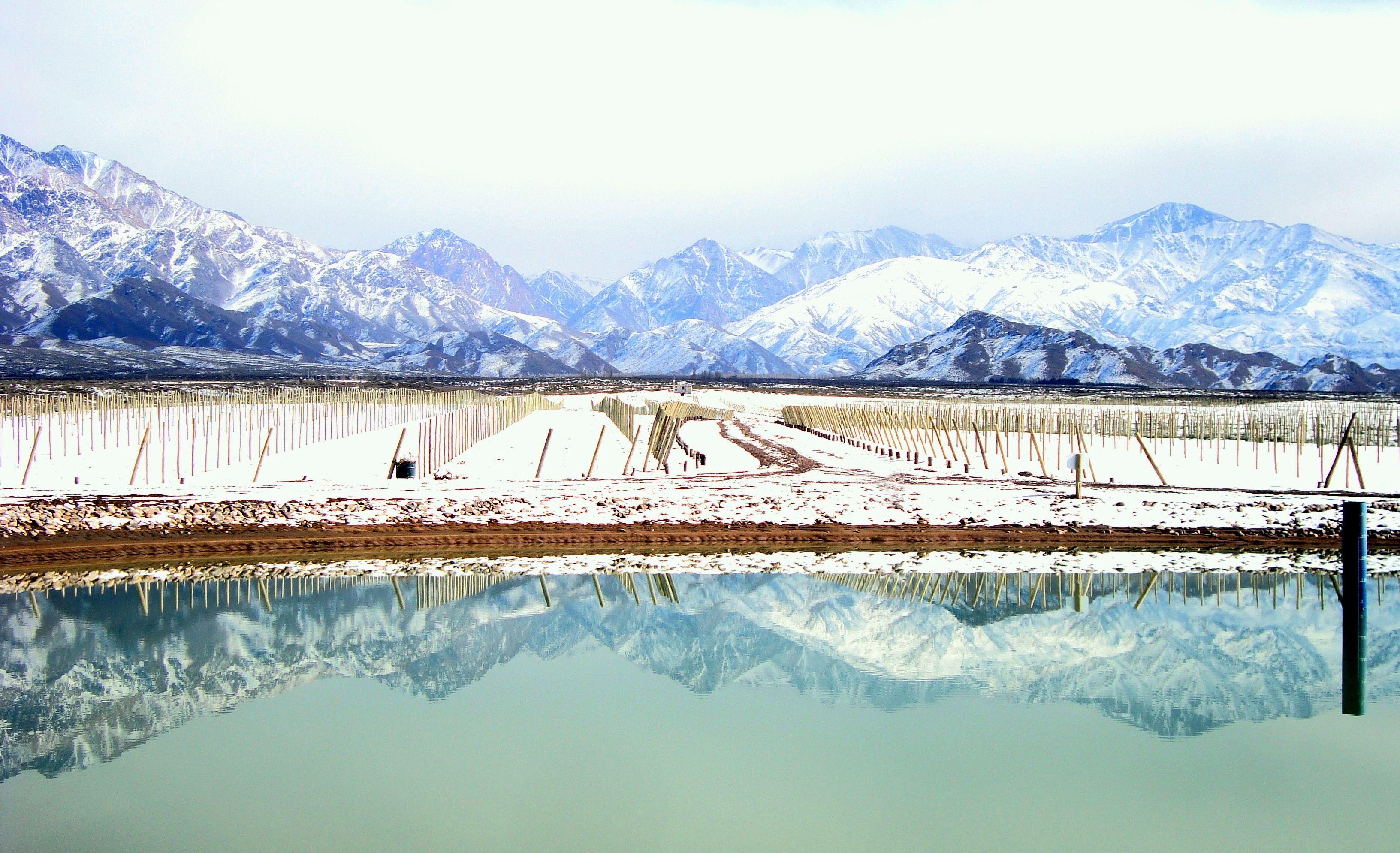 The Vineyards In The Winter Casa De Uco Mendoza Argentina  # Muebles Cuyanos