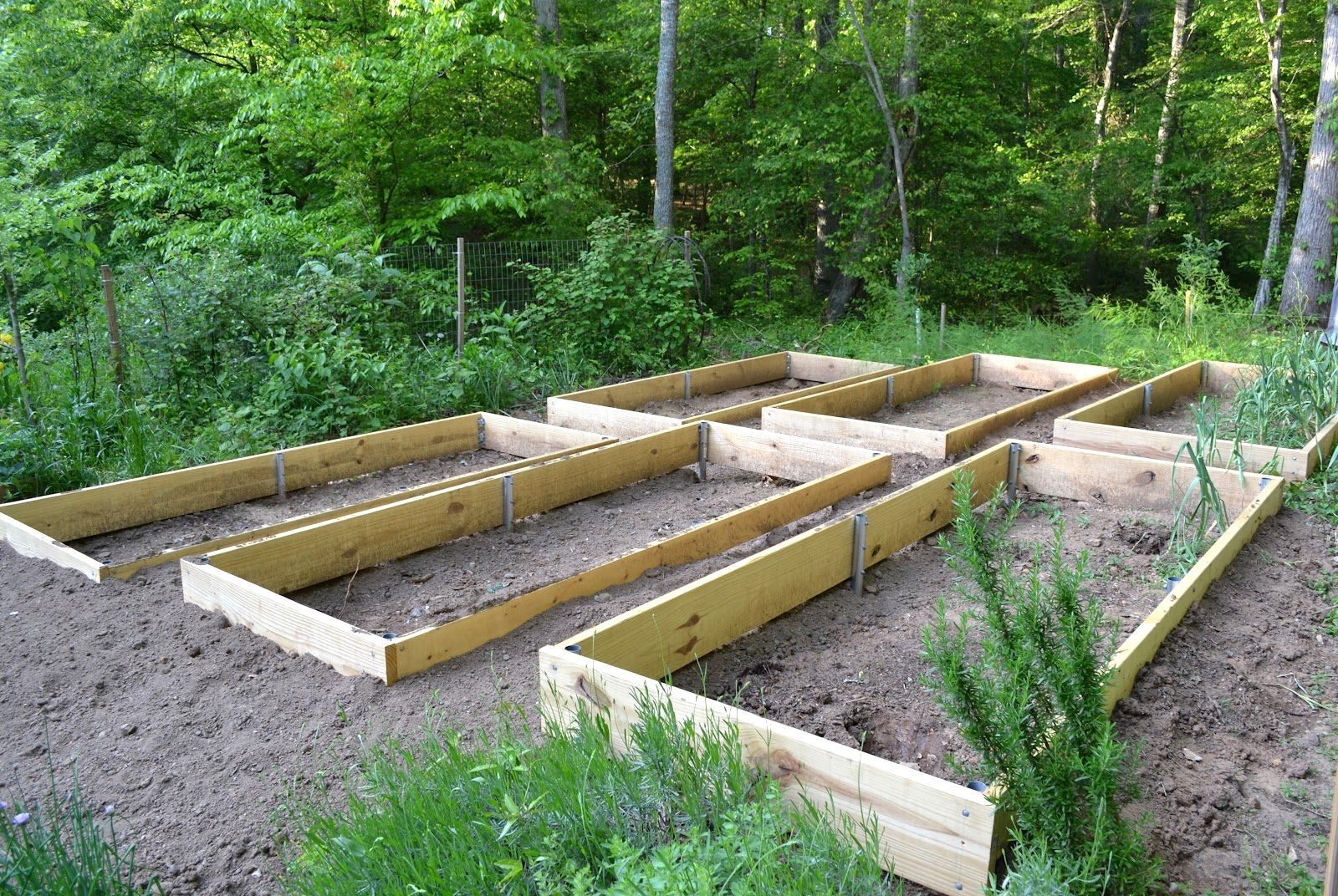 Build Raised Garden Bed Slope Growing Days The Art Of Raising Beds