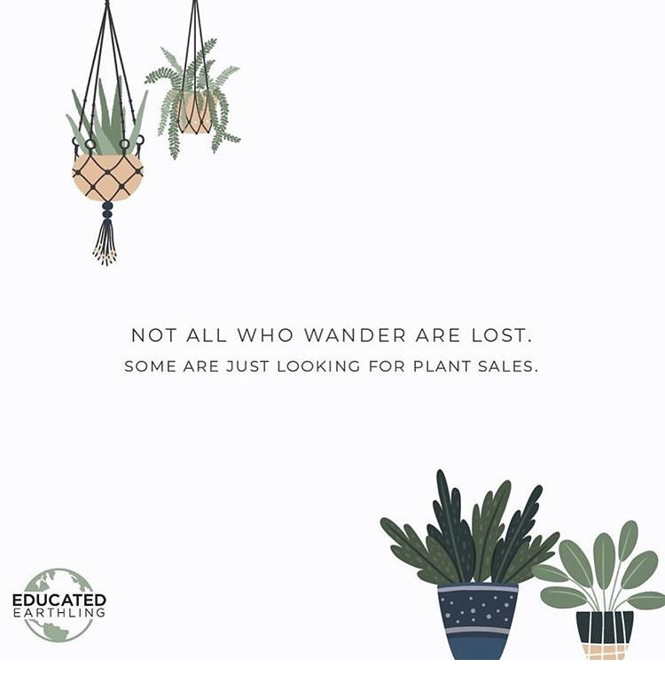 Pin By Laney Lane S On Quotes In 2020 Plants Quotes Plants Cactus House Plants