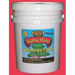 King Pine Disinfectant 19 9 Pure Black Pine 5 Gallon 640 Oz Over 40 Of Concentrated Powerful Cleanin Plant Diseases Ben And Jerrys Ice Cream Pure Products