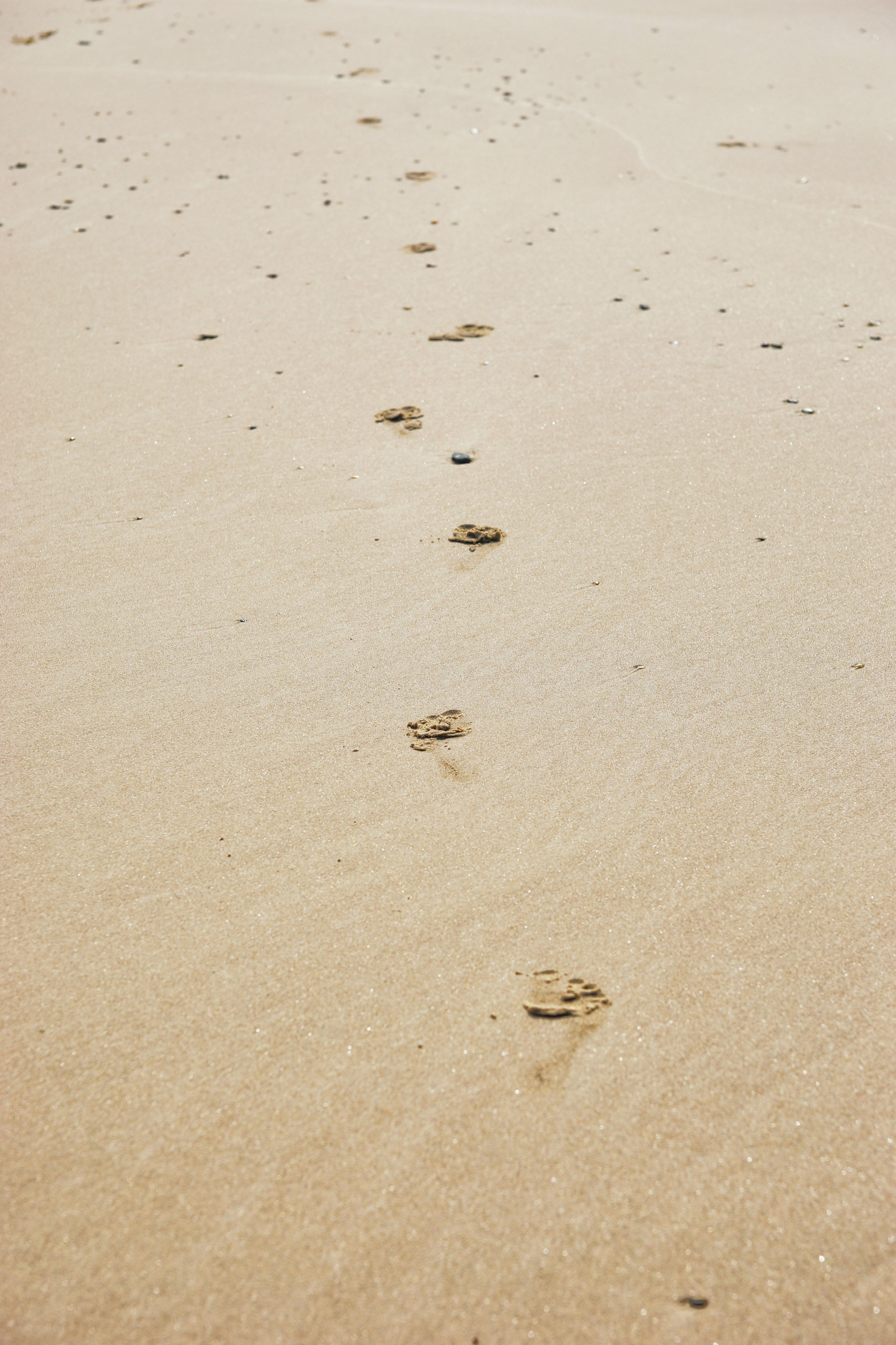 Two more free images of footprints in the sand - http://www.myfreetextures.com/two-free-images-footprints-sand/