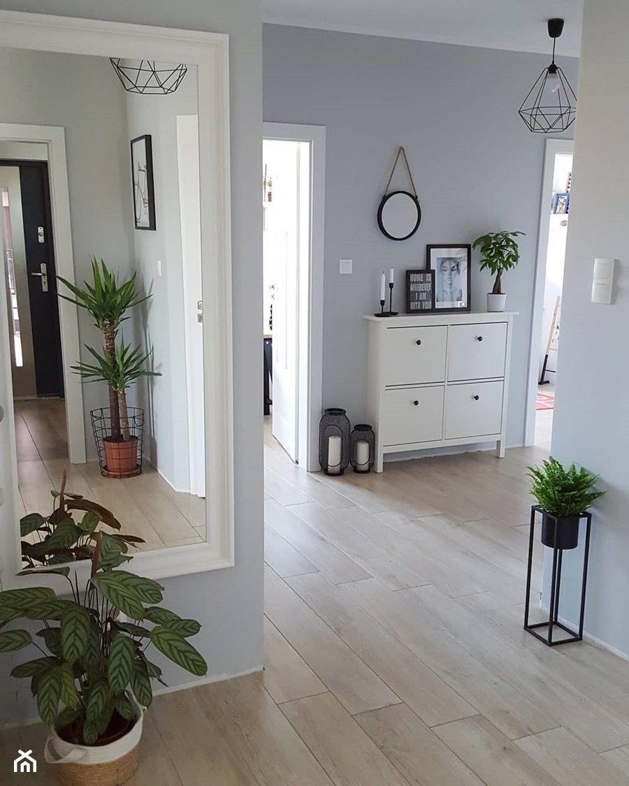 Paint colour & floor option spacedrawings Paint colour & floor ...
