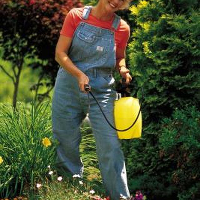 How To Stain A Fence With A Pump Sprayer Lawn Treatment Flea Treatment For Yard Garden Bugs