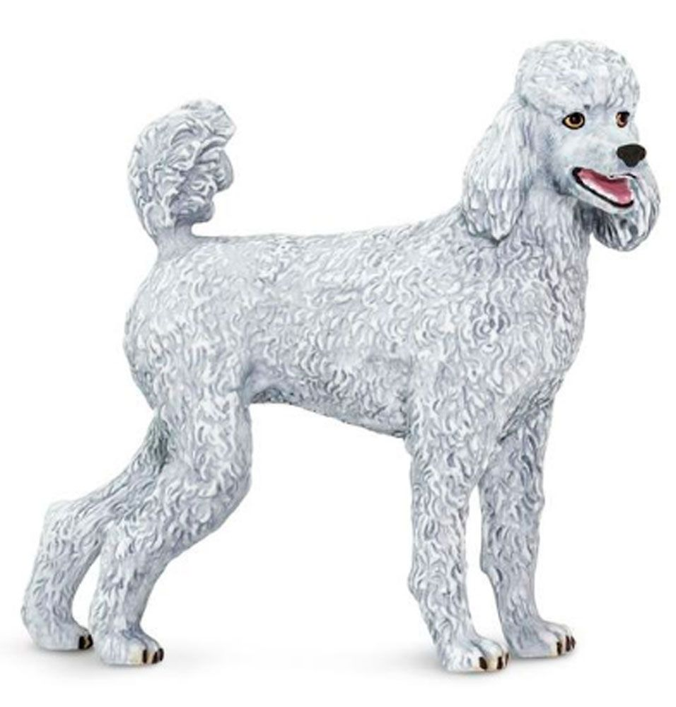 Poodle Figurine Toy Poodle Dog Poodle Sporting Dogs