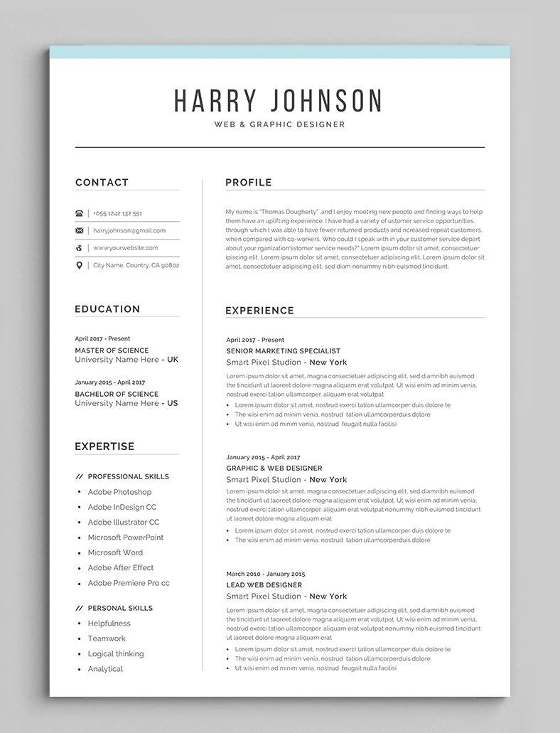 Resume Template Modern Professional Resume Template For Word