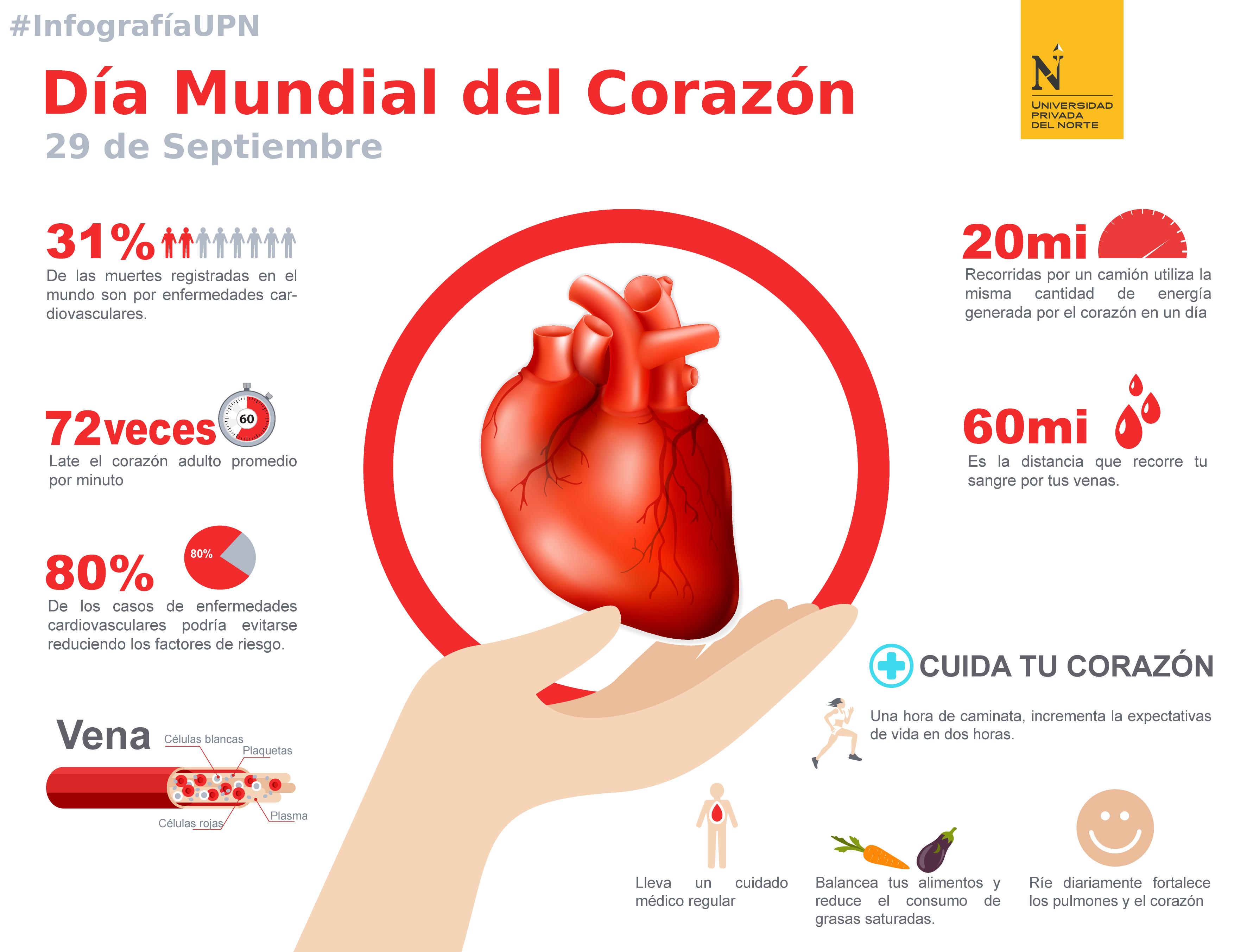 factores de riesgo para las enfermedades cardiovasculares