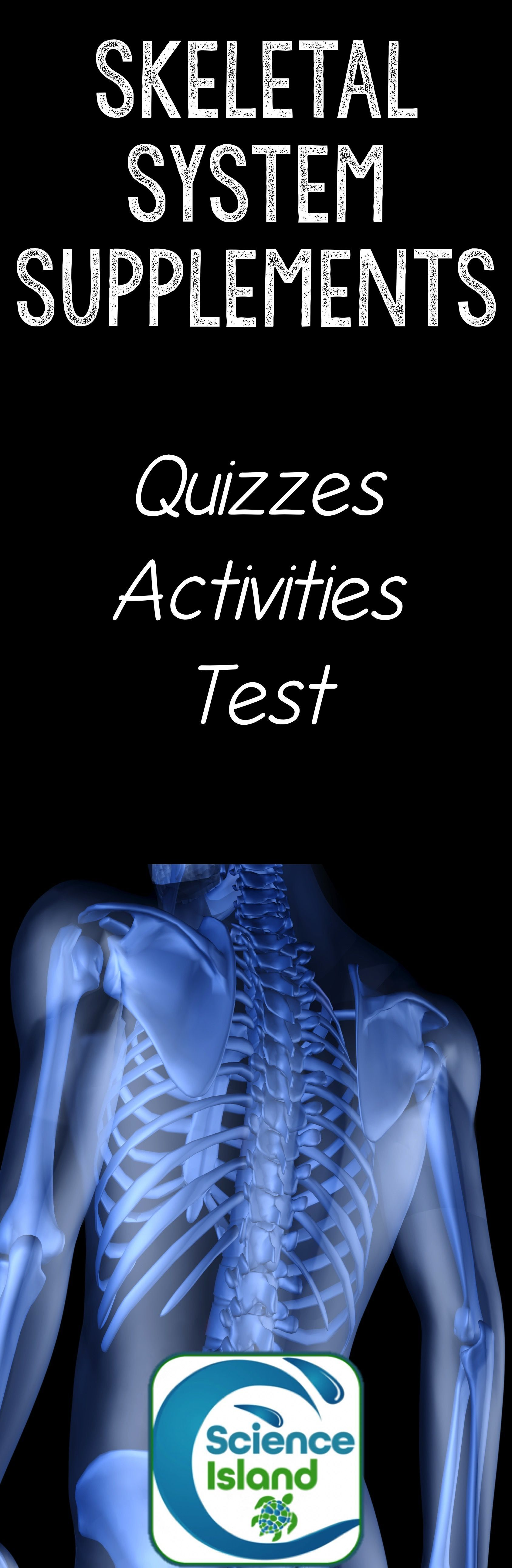 Skeletal System Supplements for Instruction and Assessment ...