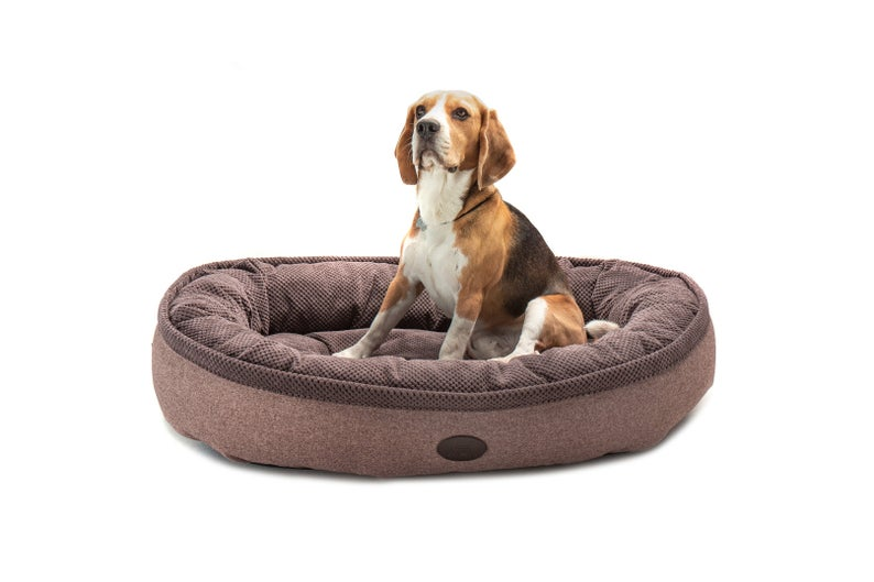 Dog Bed Comfortable Donut Cuddler Round Dog Bed Ultra Soft Washable Dog Bed Machine Washable Waterproof Bottom In 2020 With Images Round Dog Bed Dog Bed Washable Dog Bed