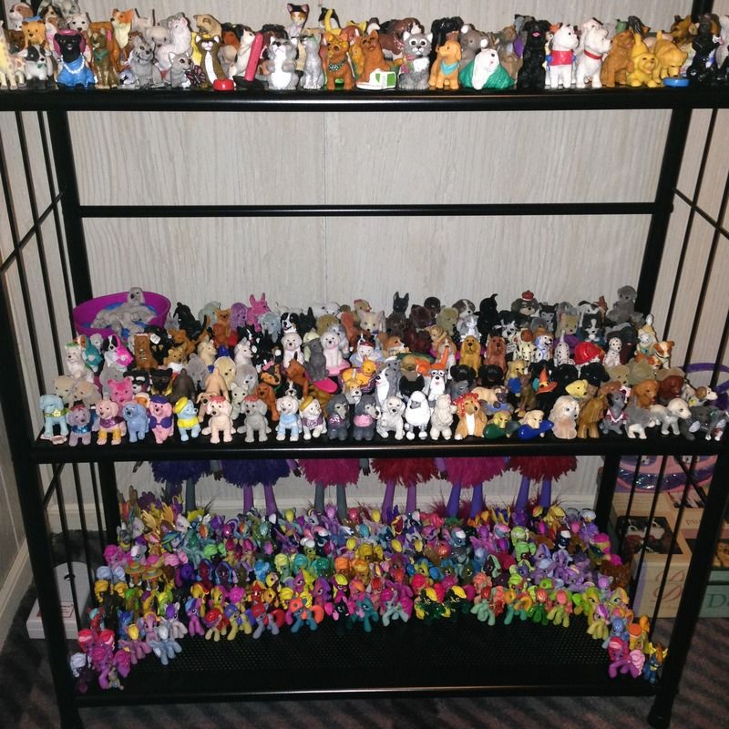 Puppy/Kitty in My Pockets, Topps Precious Puppies/Kitties/Baby Wild Animals, & blind-bag G4 ponies <3