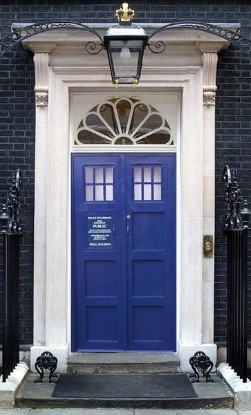 Doctor Who Home Décor • TARDIS Door  OMG OMG. This door has literally ruined all other doors for me.