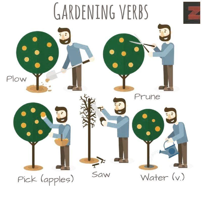 Gardening Verbs