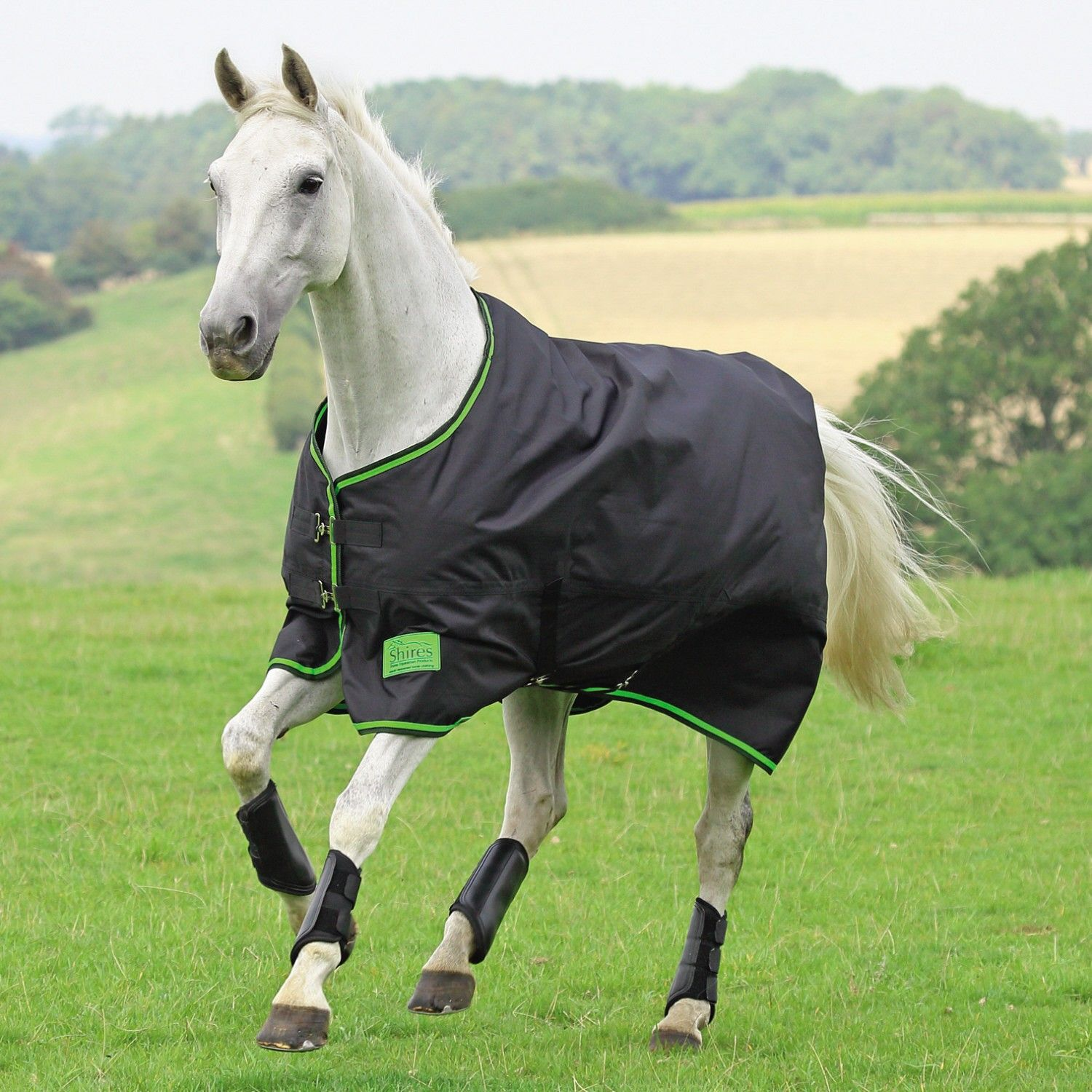 Shires Tempest Original Light Medium Turnout Rugs 100g Suitable Now Because The