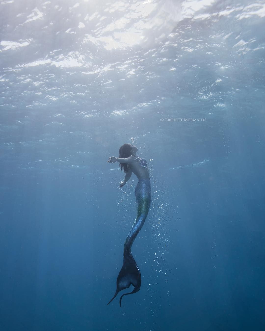 Project Mermaids.                                                       …