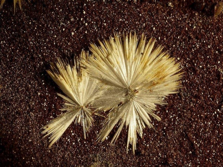 Dawsonite, NaAl(CO3)(OH)2, Santa Fiora, Monte Amiata, Grosseto, Province, Tuscany, Italy. Fov 1.2 mm. Copyright Enrico Bonacina