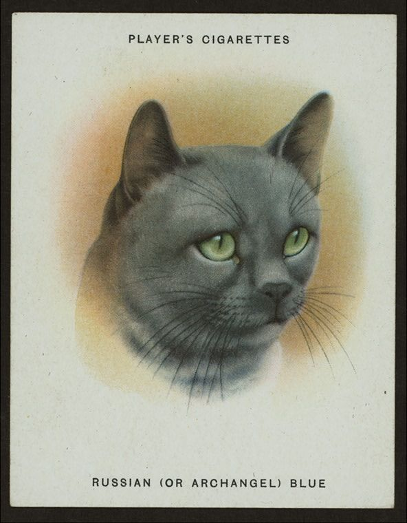Pin on Cigarette Cards