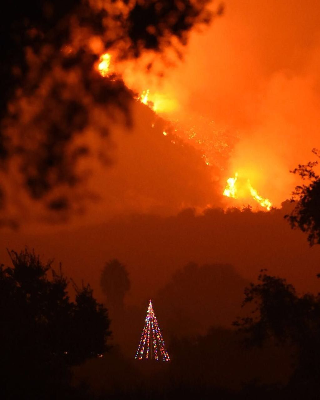 Everything You Need To Know About Wildfires California Wildfires Wine Country California California