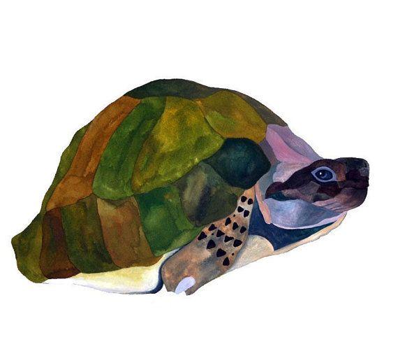 Tortoise Art