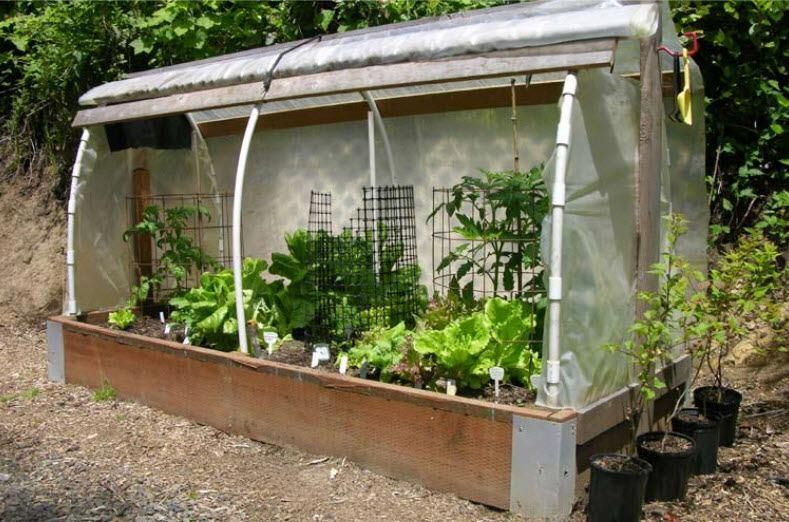 How To Build Your Own Raised Bed Cloche Raised Bed Garden Design Vegetable Garden Boxes Raised Garden