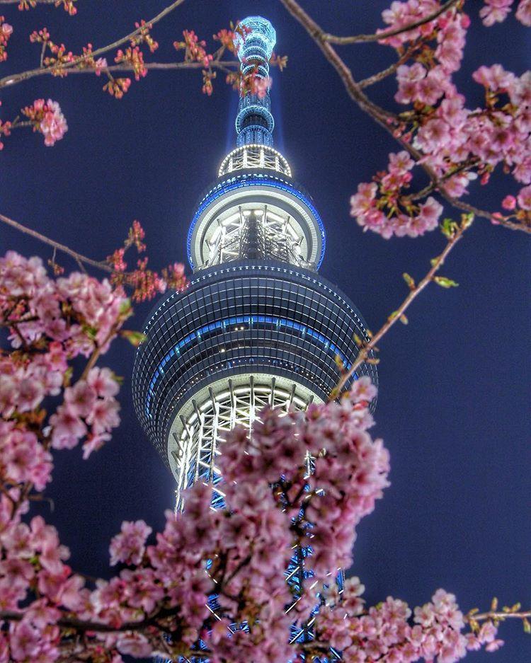 Japan Travel, Tokyo Skytree, Japan
