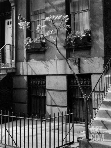 Brownstones (New York City) by Brett Weston Photographic Print by Brett Weston at Art.com