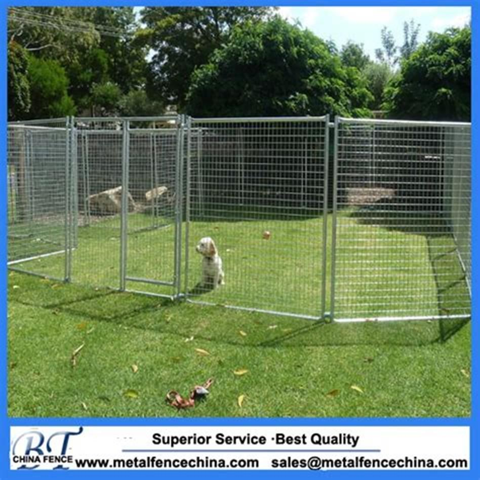 25 Best Cheap Backyard Fencing Ideas For Dogs (With Images