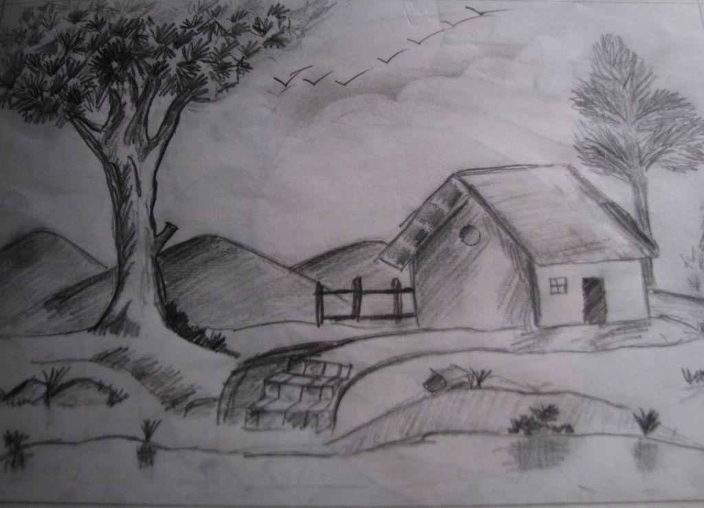 Shading Drawing Nature Pencil Shading Drawings Nature ...