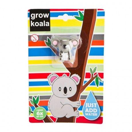GROW A KOALA | Koala, Kids playing, Novelty toys