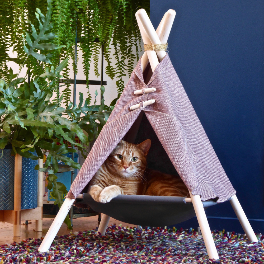 Adventure Tent in 2020 (With images) Cat kennel