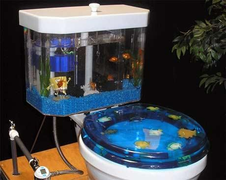 Fish Tank Toilet If You Can Actually Use I Think Everyone Would Try And Keep
