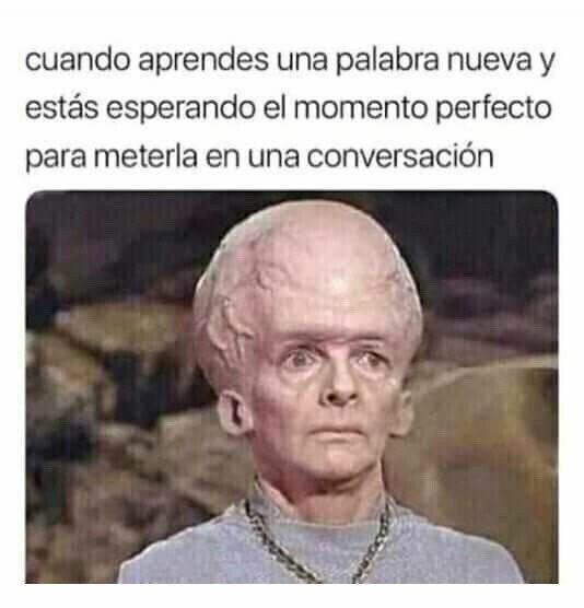 Buscando El Logro De Intelectual Memes Risas Memesespanol Instagram Fotos Chistes Top Comic Love Hoy Friends Funny Spanish Memes Memes Funny Memes