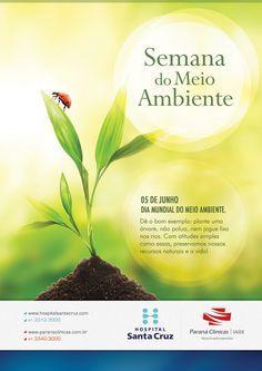 Dia Mundial Do Meio Ambiente Com Imagens Meio Ambiente