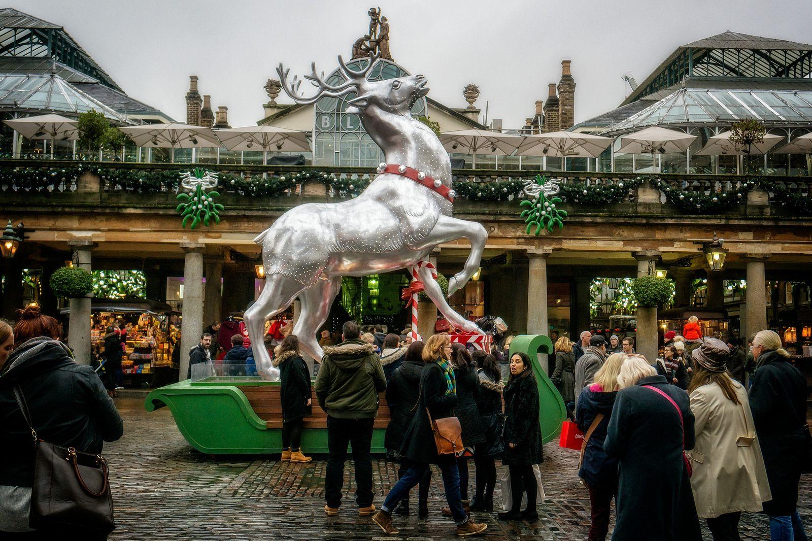 Covent Garden Reindeer Christmas In England English Christmas Reindeer